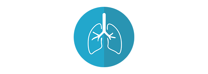 What You Should Know About Bronchitis and Pneumonia